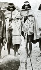 Pic 5: Two Tarahumara shamans holding rasping sticks used in healing rituals - photo by Karl Lumholtz (detail)