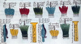Pic 3: Feathers were a key part of the tribute paid by the province of Soconusco. Over 2,400 bundles of assorted feathers were part of the tribute, along with 160 full bird skins and 800 bundles of quetzal tail feathers. Codex Mendoza fol 47r (detail)