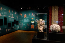 Pic 3: Much of the wall space contains graphics and text from the Codex Mendoza