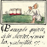 Pic 2: Dental hygiene, Aztec style; Florentine Codex Book 10. The Spanish text reads 'Paragraph 5, on the teeth, molars and tusks...'