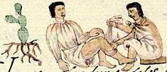 Pic 3: An Aztec doctor treating a broken leg; Florentine Codex
