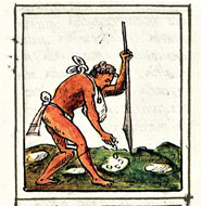 Pic 3: An Aztec farmer plants maize/corn; Florentine Codex, Book IV