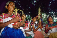Pic 7: Nahua women today dancing with sacred corn bundles