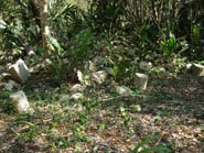 Pic 17: The importance of rain: site surface remains; most stones are stolen by looters