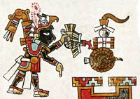 Pic 6: Offering the blood of a decapitated quail; Codex Vindobonensis, plate 20 (detail)