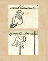 Pic 5: The two examples of personal name glyphs incorporating the buttocks in the Urrutia de Vergara Family Papers document, above