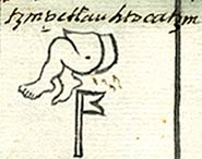 Pic 6: The name Tzinpetlauhtocatzin, based on the glyph for a naked bottom - detail from main folio above