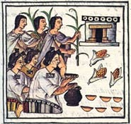 Pic 3: Aztec women offering maize to the gods; Florentine Codex Book 2