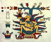 The goddess of octli/pulque, Mayahuel; Codex Laud