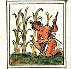 Pic 8: Farming maize; Florentine Codex