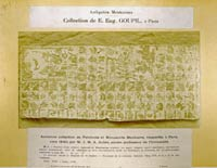 Pic 6: The Tonalamatl de Aubin was Number 1 in Goupil's collection of Mexican manuscripts; shown here are pages 16-15 as reproduced in the 'Atlas'