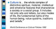 Pic 11: Excerpt from UNESCO's statement on Culture, World Conference on Cultural Policies, 1982