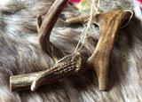 Pic 7: Deers' antlers have medicinal properties...