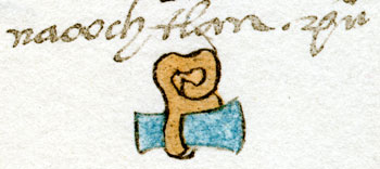 Pic 2: The toponym Nacochtlan, Codex Mendoza (original in the Bodleian Library, Oxford)